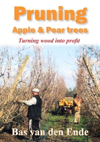 Pruning apple and pear trees