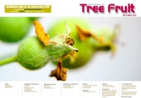 Tree Fruit Oct 2014