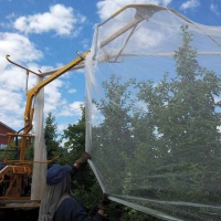 Drape Net—10 years protecting tree crops