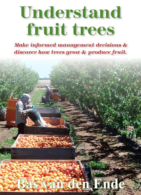 Understand fruit trees: new orchard manual that enriches grower knowledge