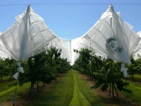 Effective rain cover system
