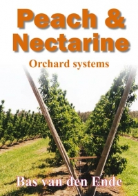 Peach & nectarine orchard systems