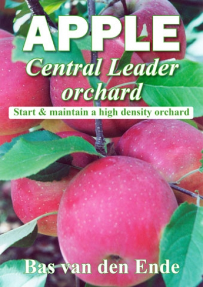 Apple Central Leader