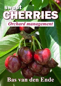Cherry orchard management
